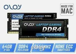OLOy Laptop Gaming Memory DDR4 RAM 64GB (2x32GB) 2666 MHz CL19 Apple mini, iMac